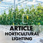 LEDiL Horticultural lighting article