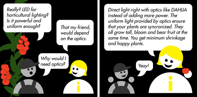 LEDiL DAHLIA horticultural LED optics ensure your plants bloom