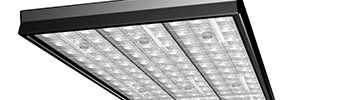 Track light module luminaire example with LEDiL FLORENCE-3R optics