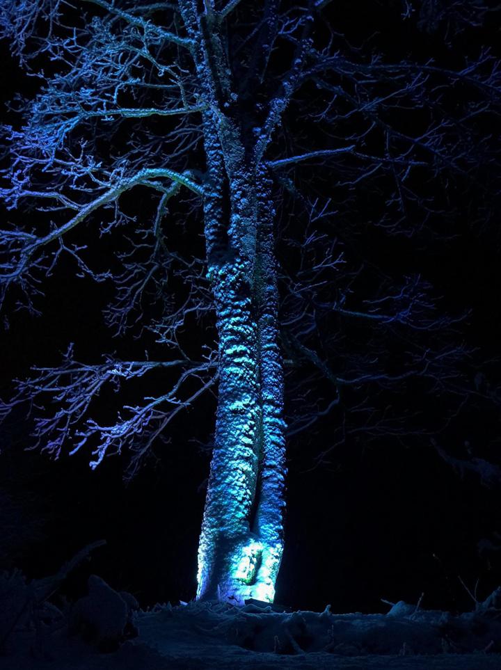 Outdoor_lighting_case_in_Riga