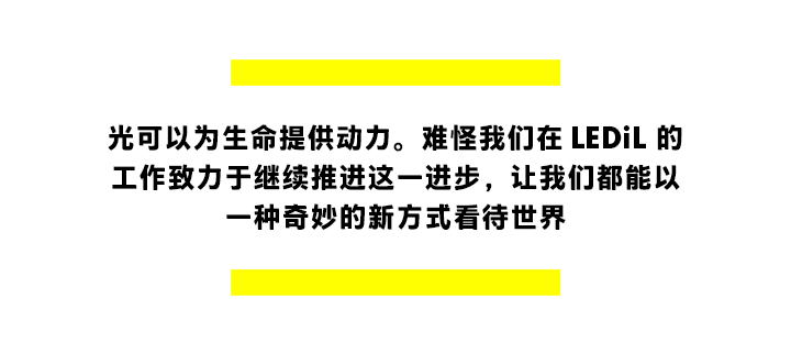Our_story_of_light_article1_quotation2_CH